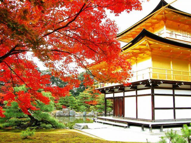 Cores destacam jardim oriental